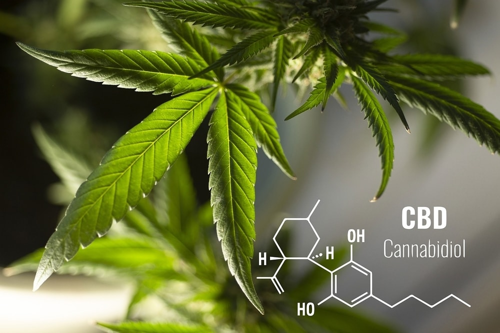Cannabidiol chemical compound with hemp leaves in the background
